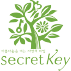 корейская косметика бренда Secret Key