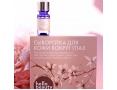 Сыворотка для век с растительными экстрактами Hello Beauty Asian Herb Eyeserum