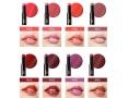 Помада с эффектом сияния The Saem Eco Soul Moisture Shine Lipstick
