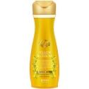 Шампунь против выпадения волос Daeng Gi Meo Ri Yellow Blossom Shampoo