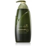 Восстанавливающая маска для волос Rosee Eco Aloe Hair Treatment