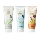 Пенка очищающая The Saem Healing Tea Garden Cleansing Foam