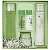 Женский подарочный набор по уходу за лицом с экстрактом зеленого чая 3W Clinic Love Forever Green Tea Natural Skin Care