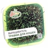 Проращиватель Здоровья Клад проращиватель для зеленой травы
