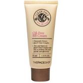 ББ крем The Face Shop Clean Face Oil-Free BB Cream 35ml