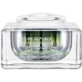 Омолаживающий крем для кожи глаз с экстрактом красного женьшеня Nature Republic Ginseng Royal Silk Eye Cream