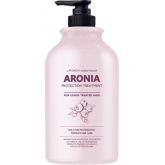 Восстанавливающая маска для волос Pedison Institut-Beaute Aronia Color Protection Treatment