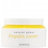 Питательный крем с прополисом Eunyul Natural Power Propolis Cream