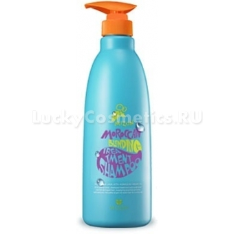 Шампунь и бальзам- 2 в 1 Mizon Moroccan treatment shampoo