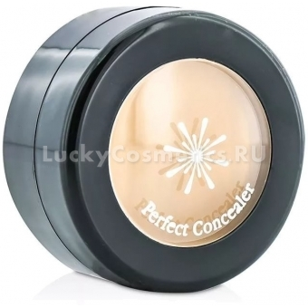 Консилер для максировки несовершенств Missha The Style Perfect Concealer
