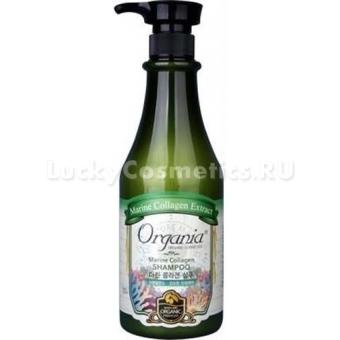 Шампунь для волос с морским коллагеном White Cospharm Marine Collagen Shampoo