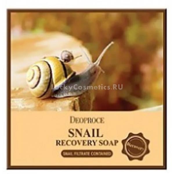 Deoproce Snail SoapОчищение &amp;ndash; один из самых важных этапов ухода за кожей, от качества которого напрямую зависит ее здоровье. При недостаточно качественном очищении кожа может покрыться высыпаниями из-за развития микроорганизмов-патогенов на ее поверхности, может страдать от обезвоживания или аллергических реакций на компоненты средств для умывания.<br><br>Мыло с экстрактом улитки не только хорошо очищает ежедневные загрязнения, растворяет и вымывает сальные пробки из пор, но и способствует восстановлению кожи. Snail Soap от Deoproce изготовлено на основе натуральных компонентов и не повредит даже гиперчувствительной коже.<br><br>Улиточный муцин, входящий в состав мыла, разглаживает кожу и стимулирует заживление микроповреждений. Фильтрат улитки содержит противомикробные пептиды, поэтому при регулярном употреблении мыла высыпания акне уменьшаются, восстанавливается локальный иммунитет кожи.<br><br>Использовать его можно для очищения всего тела, при умывании лица желательно сразу после очищения увлажнить кожу мистом. На сухой коже может появиться ощущение стянутости после применения, лучше отдать предпочтения двухфазным очищающим средствам с натуральными маслами.<br><br>&amp;nbsp;<br><br>Объём: 100 гр.<br><br>&amp;nbsp;<br><br>Способ применения:<br><br>Вспеньте мыло влажными ладонями или мочалкой сеткой и нанесите пену на тело по всей площади (при этом лучше избегать участков с особенно нежной чувствительной кожей, как вокруг рта или глаз). Помассируйте несколько минут, чтобы загрязнения растворились, а поры очистились, смойте проточной водой.<br>