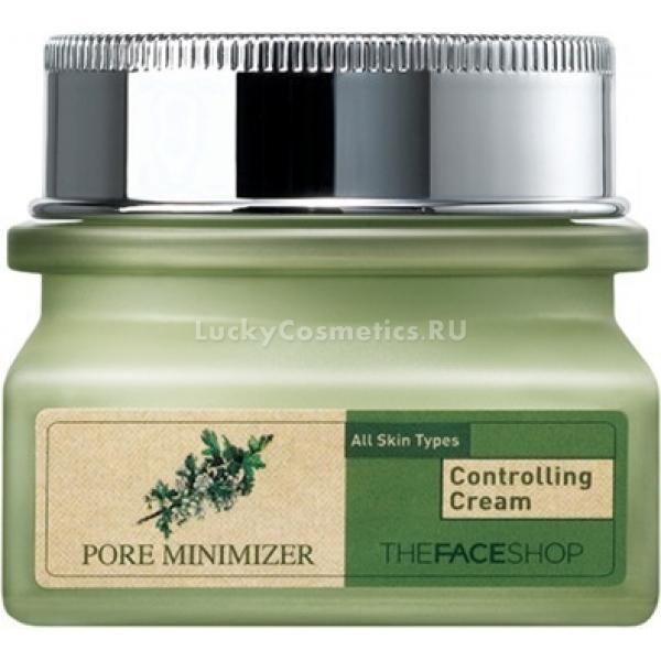 Купить The Face Shop Pore Minimizer Controlling Cream