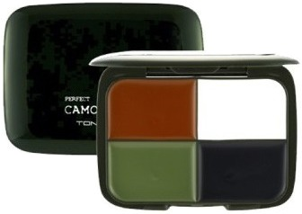 Tony Moly Perfect Camo Cream
